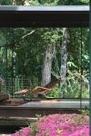 detalhe sala de estar com vista para vegetação