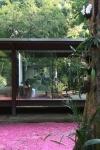 vista externa sala de estar integrada ao jardim externo