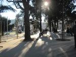 F20-Guimaraes-Alameda ©ce.eaum